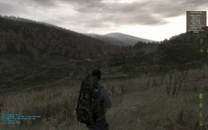Скриншот из Day Z (ARMA 2 mod)